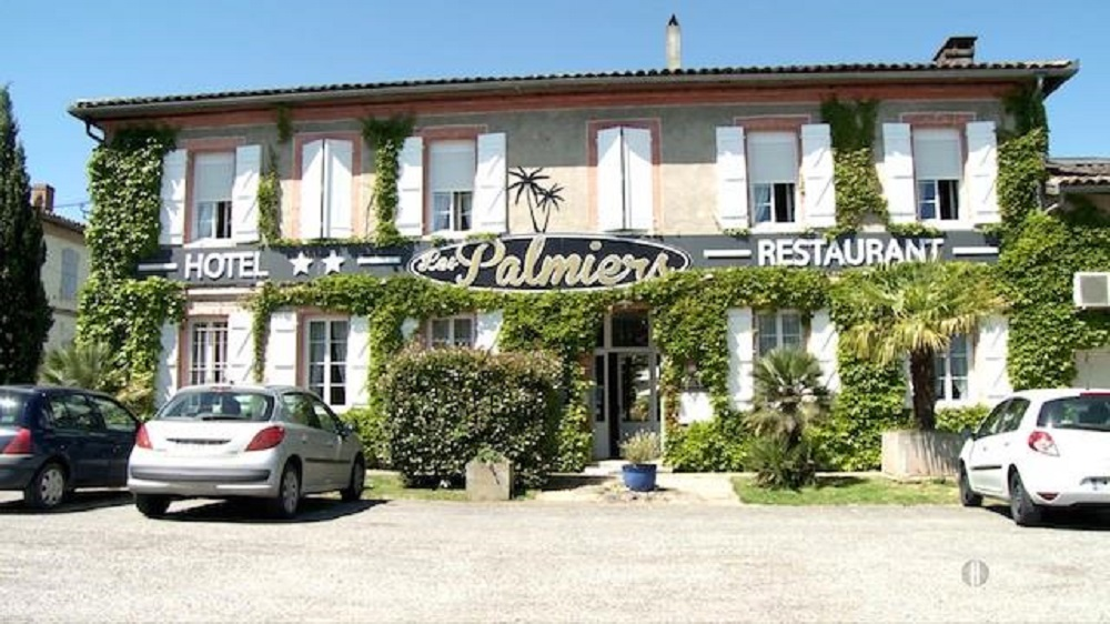Read more about the article LES PALMIERS